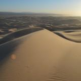 Khongoryn Els zandduinen in Mongolië