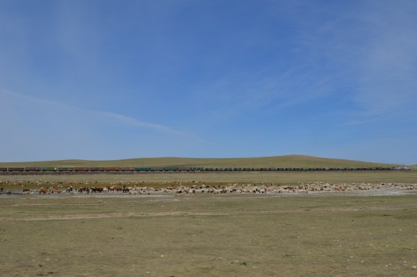 Trein in Mongolië
