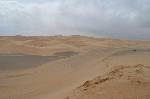 Roadtrip door Mongolië
