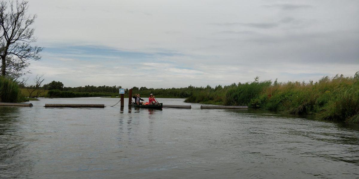 Kanoroute voor 1 dag kanoën in De Biesbosch
