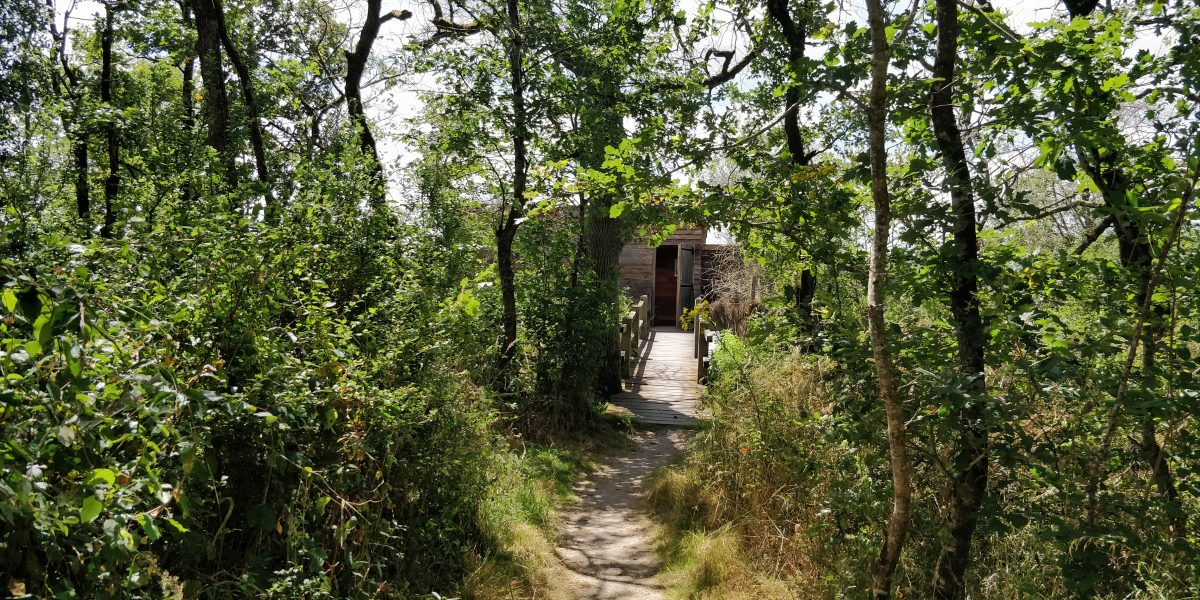 Dagtour Regionaal Park La Brenne